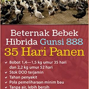 Foto Produk Beternak Bebek Hibrida Gunsi 888 35 Hari Panen dari Toko Kutu Buku