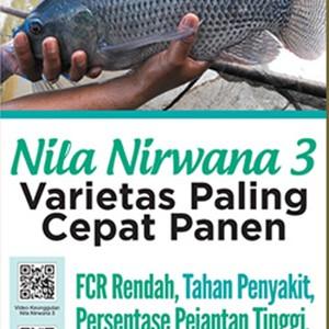 Foto Produk Nila Nirwana 3 - Varietas Nila yang Paling Cepat Panen dari Toko Kutu Buku