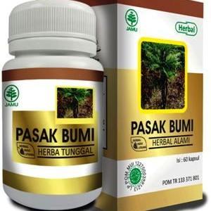 Foto Produk HIU-PASAK-BUMI | MENAMBAH STAMINA PRIA | AA124 dari sehat bugar herbal