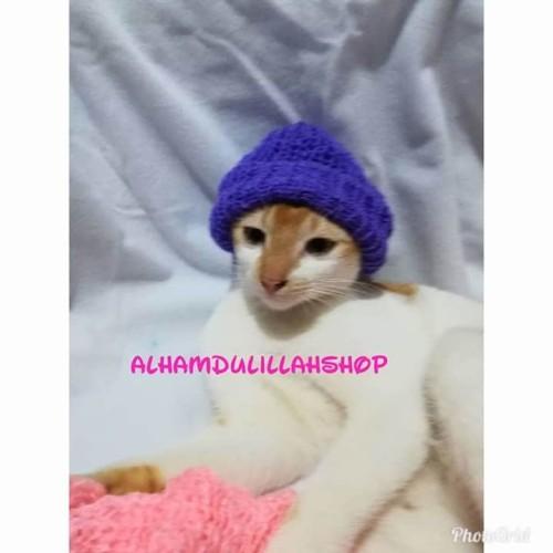 Foto Produk krudung rajut untuk kucing - Biru dari alhamdulillahshop