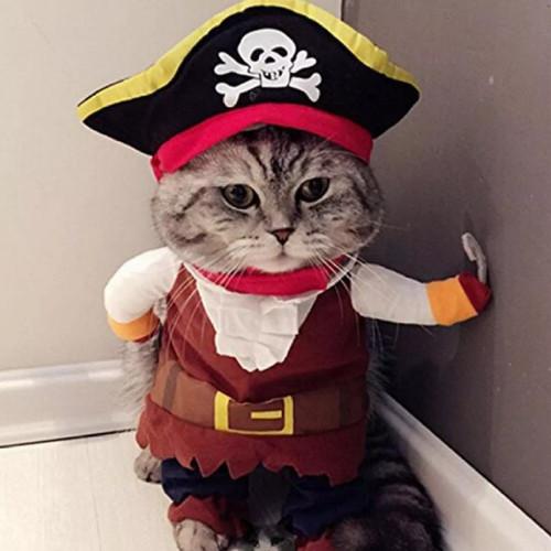 Foto Produk Baju kucing kostum bajak Laut handmade dari alhamdulillahshop