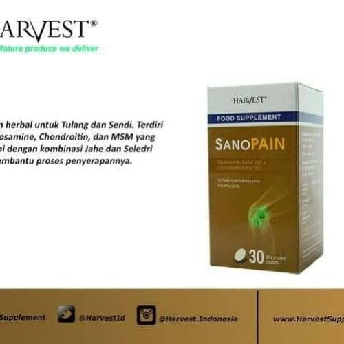 Foto Produk Harvest sanopain isi 30 utk rematik dari bigsbigsshop