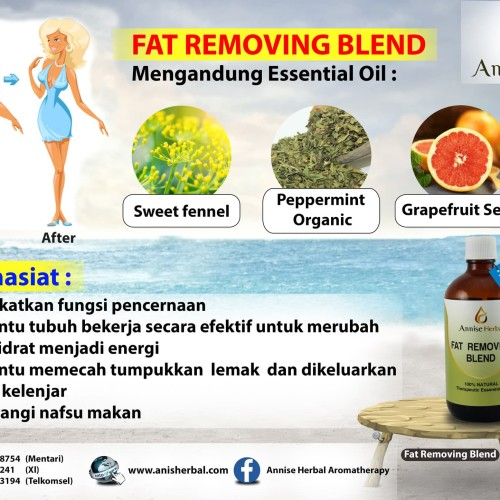 Foto Produk Obat Diet, Menghilangkan lemak, Herbal Alami, Fat Removing Blend 120ml dari anniseherbal