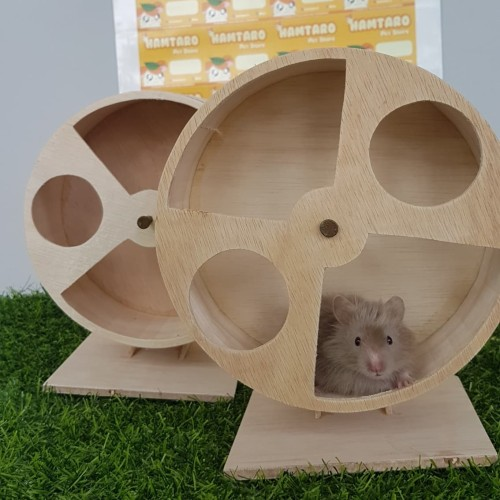 Foto Produk kincir besar hamster syirian 17 CM / joging wheel hamster model kayu dari iBekasi
