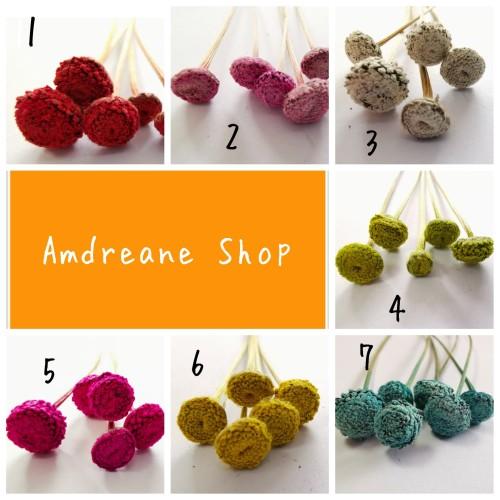 Foto Produk Bunga kering dari Andreane Shop