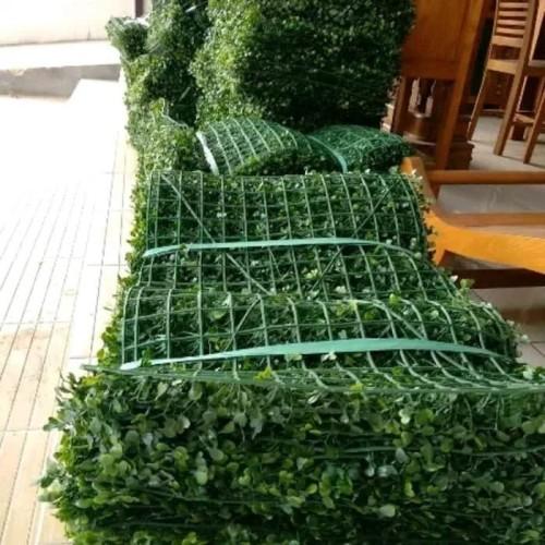 Foto Produk tanaman hias rambat dolar sintetis artificial - daun palsu hiasan dari probit store