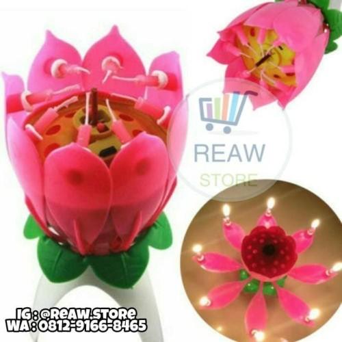 Foto Produk Lilin Music Bunga Lotus / Candle Lotus Flower dari Reaw Store