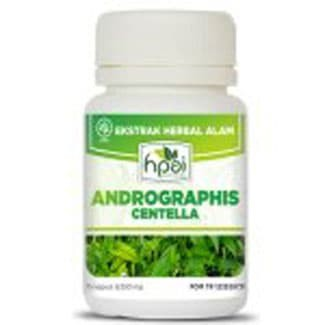 Foto Produk ANDROGRAPHIS CENTELA - Meningkatkan kekebatan tubuh dari Yons Shop Klaten