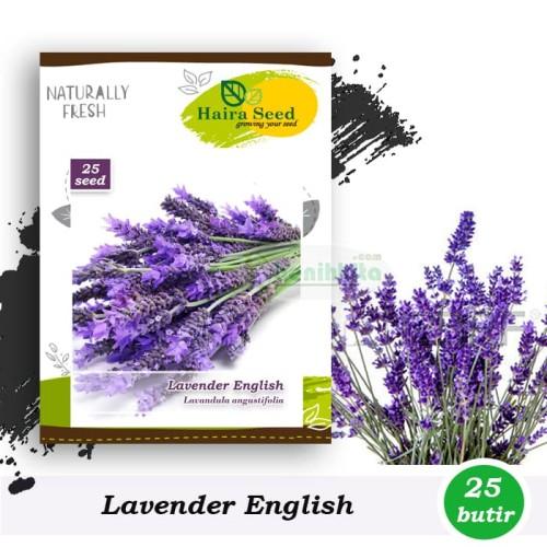 Foto Produk Benih-Bibit Bunga Lavender English (Haira Seed) dari benihkita