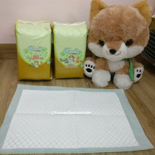 Foto Produk perlak pipis anjing / underpad untuk anjing dan kucing - Mpets 33x45cm dari House Of Pomeranian