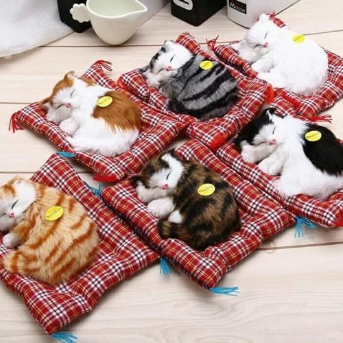 """Foto Produk Boneka Simulasi Kucing BISA BERSUARA """"Termurah"""" dari Everlasting Gift"""
