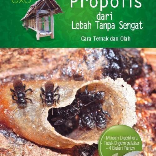 Foto Produk Buku Propolis Dari Lebah Tanpa Sengat dari Toko buku nugroho dua