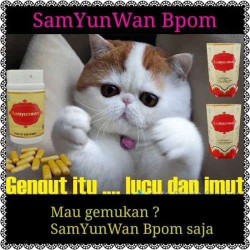Foto Produk SamYunWan BPOM Suplemen Penggemuk dari JW Kosmetik