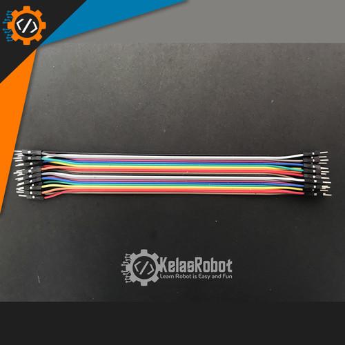 Foto Produk Kabel jumper MALE to MALE  20cm 20pin dari Kelas Robot