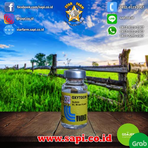 Foto Produk Star Farm BTM - Oxytocin obat Hormon pemacu kontraksi dari Star Farm