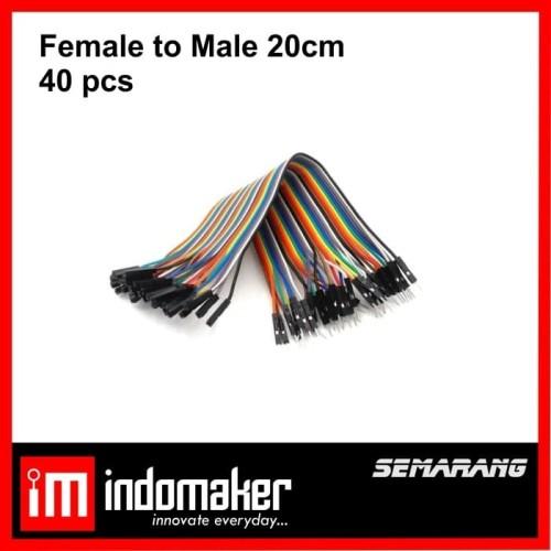 Foto Produk Kabel Jumper Arduino Dupont 20 cm Female to Male Pelangi 1 lembar 20cm dari indomaker