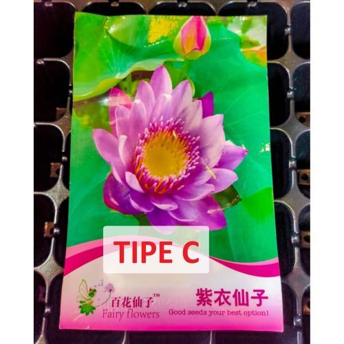Foto Produk Tipe C Benih Biji Bibit Lotus Seroja Nelumbo nucifera Retail Pack dari Biji Benih