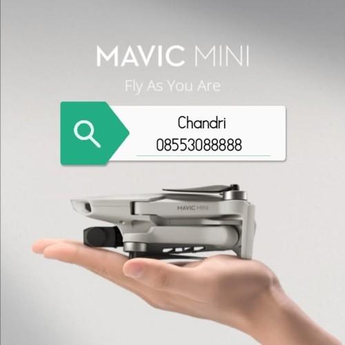 Foto Produk DJI Mavic Mini Basic -Surabaya Only- dari DJI Store Surabaya