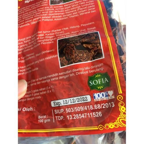 Foto Produk Sarang Semut Rebus (asli Papua) dari nobitajamu