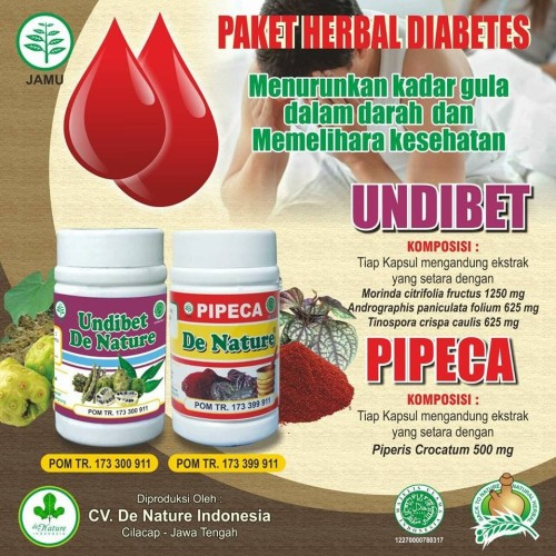 Foto Produk Obat Herbal Diabetes De Nature - UNDIBET PIPECA dari denature_indonesia
