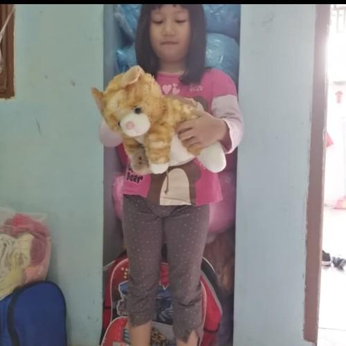 Foto Produk Boneka kucing cat kepala tikus import dari dunia boneka lucu
