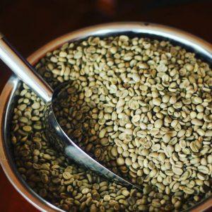 Foto Produk Green Bean Kopi Arabika Gayo Luwak Liar dari Azacoffee