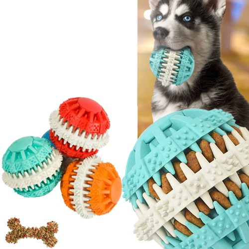 Foto Produk Active Dog Chew Pet Toys Pet Clean Teeth Chew Rubber Dumbbell dari Activity Store