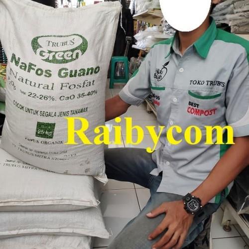 Foto Produk Pupuk Organik Nafos Guano 1 KG Repack Trubus Pupuk Kotoran Kelelawar dari Raibycom