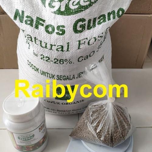 Foto Produk Pupuk Organik Nafos Guano 1Kg Repack Trubus Pupuk Kotoran Kelelawar dari Raibycom