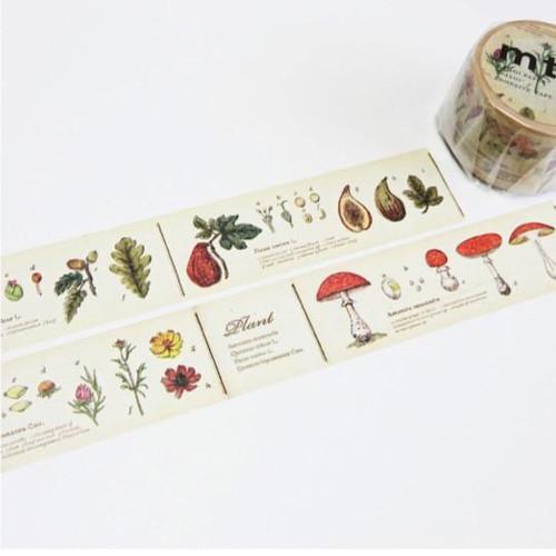 Foto Produk MTEX1P34 (30mm) encyclopedia / plant dari gudily