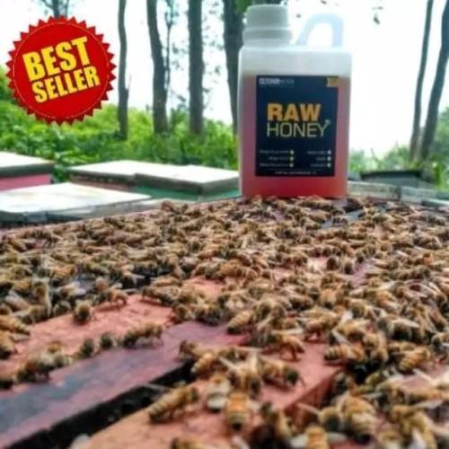 Foto Produk Madu Budidaya/Ternak Randu Nektar Bunga Lebah/Tawon Asli Murni dari cangkirstore
