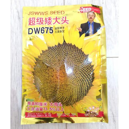 Foto Produk Biji Benih Bibit Sunflower F1 varietas DW675 kwaci bunga matahari dari Biji Benih
