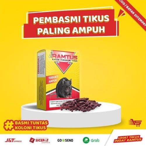 Foto Produk Racun Tikus RAMTUS 6 Pack - Pembasmi Tikus Paling Ampuh dari Raka Here_shop