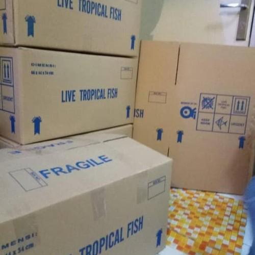 Foto Produk Kardus Buat Packing dari Raka Here_shop
