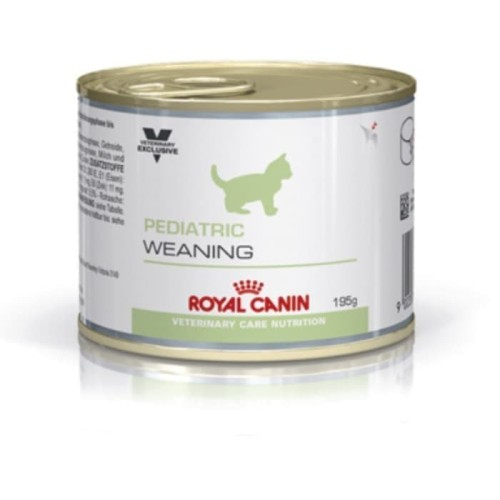 Foto Produk Royal Canin Pediatric Weaning Canned 195gr - Kitten - Anak Kucing dari Memang Pet Shop