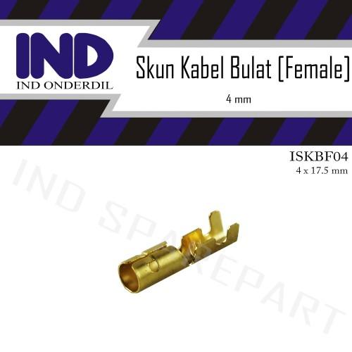 Foto Produk Skun-Sekun-Terminal Bulet-Bulat Cewe-Female Kuningan Socket-Soket 4 mm dari IND Onderdil