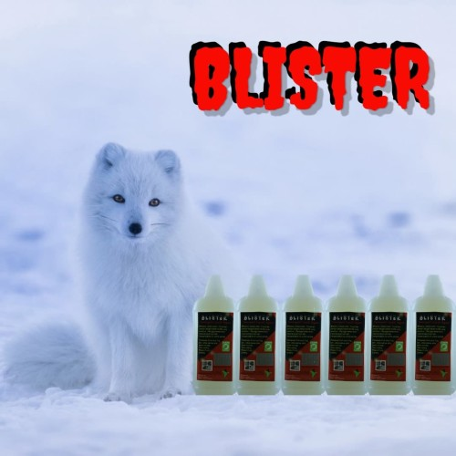 Foto Produk BLISTER dari Kuman Clean Official