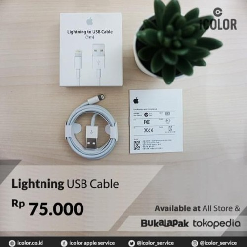 Foto Produk Original cable / kabel lighting iphone 5, 6, 7, 8, X / ipad / ipod dari iCOLOR Service