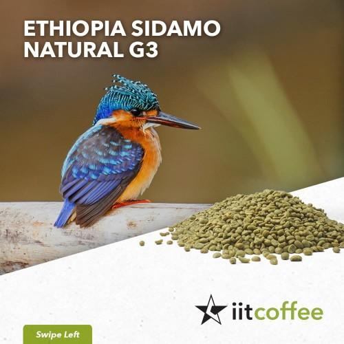 Foto Produk Arabica Green Beans - Ethiopia Sidamo G3 Natural 1Kg dari iit.coffee