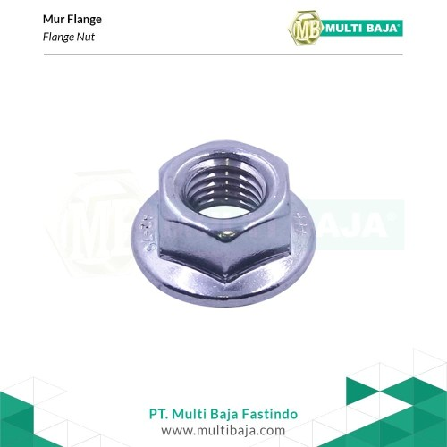 Foto Produk SUS 304 Flange Nut M10 x 1.25 Drat Halus ( Stainless steel ) dari Multi Baja Fasteners