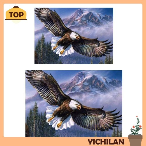 Jual Promo Yichi Lukisan Diamond 5d Diy Gambar Burung Elang Untuk Jakarta Pusat Brownstore 1 Tokopedia