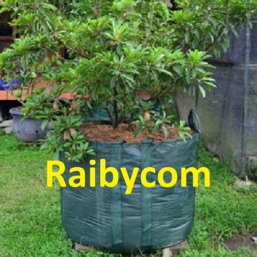 Foto Produk Planter Bag 500 Liter Easy Grow Jumbo Planterbag Pohon Buah Besar dari Raibycom