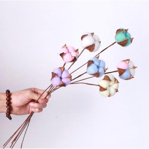 Foto Produk Cotton Dried Flower / Bunga Kapas Preserved flower - Merah Muda dari Floristsupply