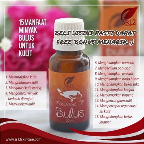 Foto Produk MINYAK BULUS SR12 / MINYAK BULUS ORIGINAL / BULUS BPOM / MENGENCANGKAN dari spareparthp original