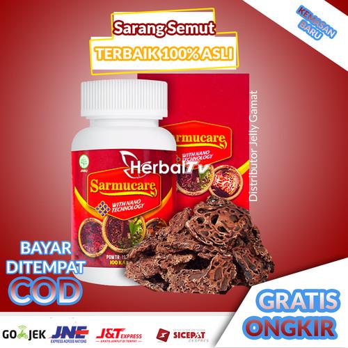 Foto Produk Walatra Sarang Semut Isi 100 Kapsul Mecodia 100% Ekstrak Sarang Semut dari DISTRIBUTOR JELLY GAMAT