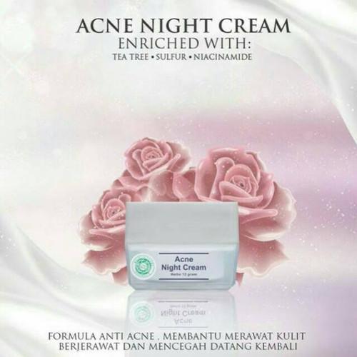 Foto Produk Night Cream MS Glow   Cream Malam Krim Malam MS Glow Series - acne dari DuniaKecantikan