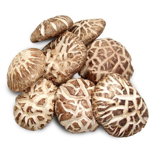 Foto Produk Jamur Shitake Xiang Gu Hioko Fragrant Mushroom 100 g dari Healthy By Tasty