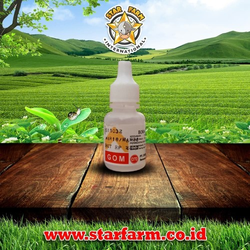 Foto Produk Gom Boracs Gliserin 10% - Star Farm dari Star Farm