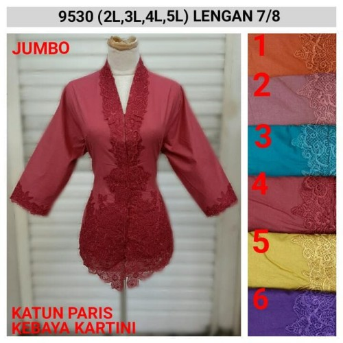 Foto Produk Kebaya Bordir Kartini Size Jumbo Kode 8946 dari Indah Kebaya Jkt