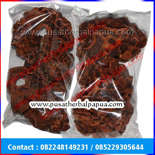 Foto Produk Sarang Semut Merah Papua Asli dari PUSAT HERBAL PAPUA ASLI